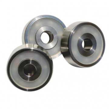 Chik Nylon Roller Bearings 32008 32022 32060 32218 32244 Roller Bearings