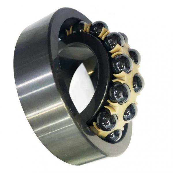 SKF, NSK, NTN, Koyo NACHI China Factory P5 Quality Zz, 2RS, Rz, Open, 608zz 6703 6704 6705 6706 6707 6708 6709 6710 6711 Deep Groove Ball Bearing #1 image